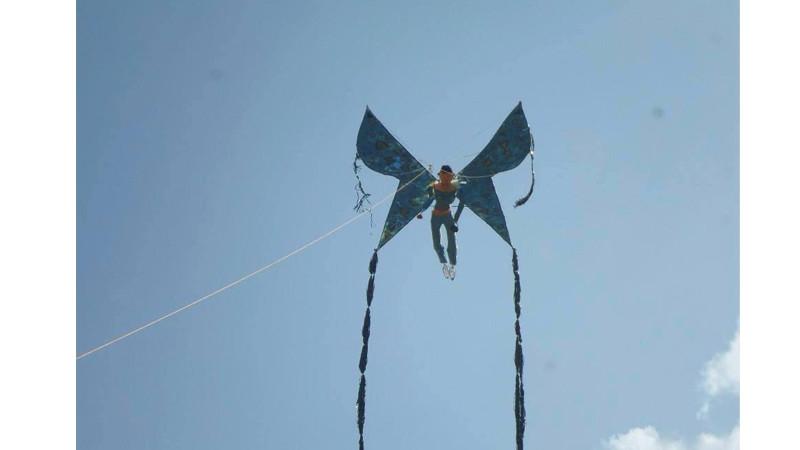 kite 8561