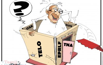 TNA Cartoon (1)