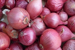 Extreme drought in the North – Bombay Onion cultivation affected