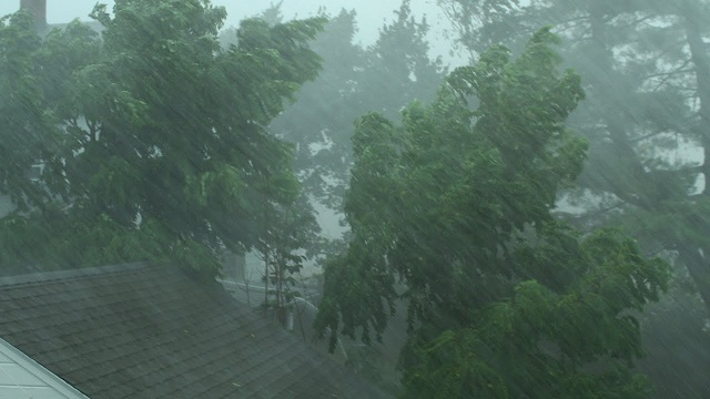 Possibility of heavy rains in the North- Warns Met Department