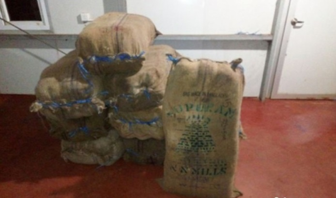 30 Million worth of Kerala Ganja Captured in Musaly Mannar