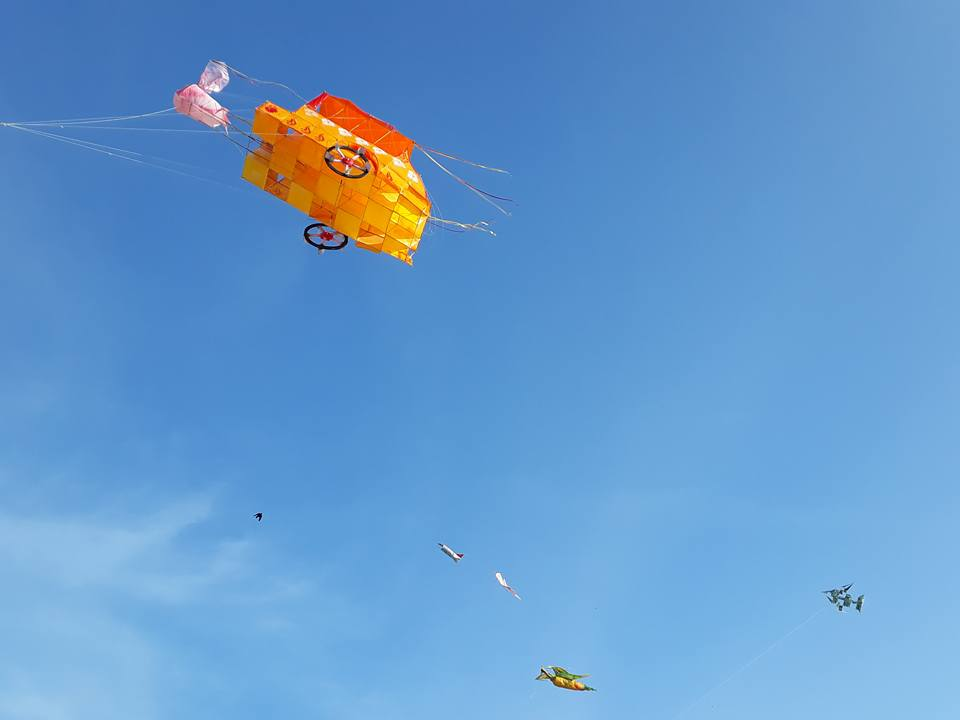 Kite Flying Competition 1