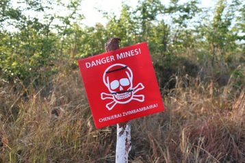 Das and Halo Trust de-mining Organizations have removed 295,000 mines