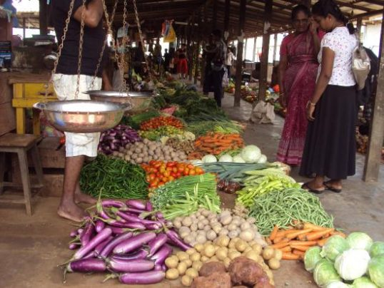 Contribution of Jaffna Farmers in the decline of prices of vegetables in Sri Lanka