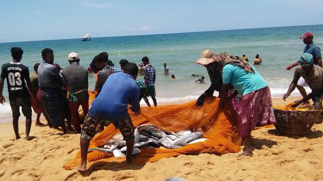 jaffna-fish-180418-seithy-2