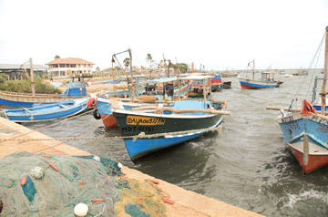 Navy should get out of Kurunagar jetty area in 2 months, decides the DDC, Jaffna