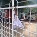 'Blood Money' on Thavarajah's Gate 4