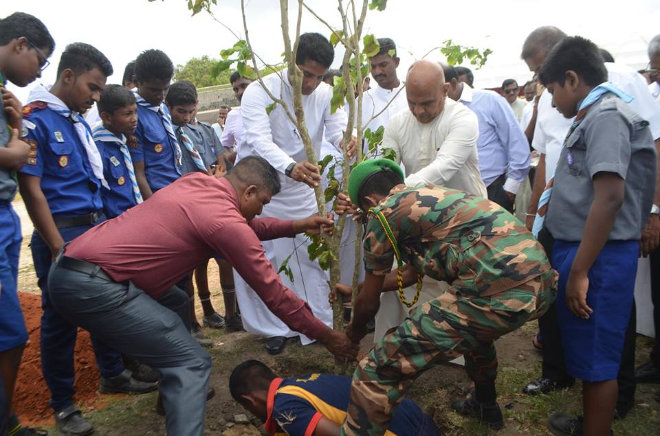Tree Planting in Jaffna with the contribution of the Army 2