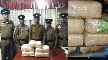 72 Kgs. Ganja put out to dry on roof captured by Point Pedro Police