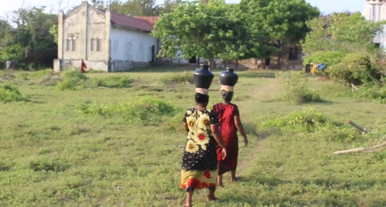 Continuous drought in Mannar District. Human and animals affected alike