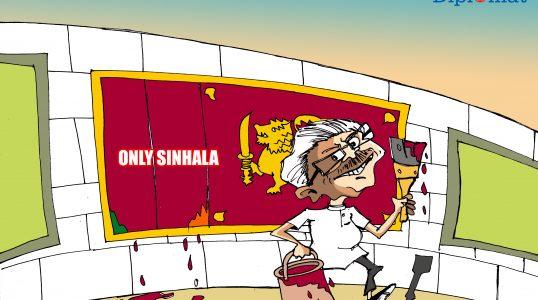 TD Cartoon