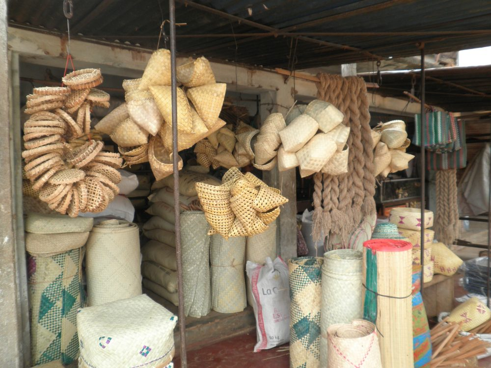 300 families in Mannar dependent on Palmyra based products in utter helplessness