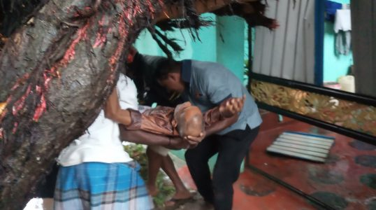 Severe Damage in North due to Cyclone Purvi 8